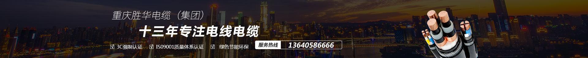 重庆电线电缆厂家